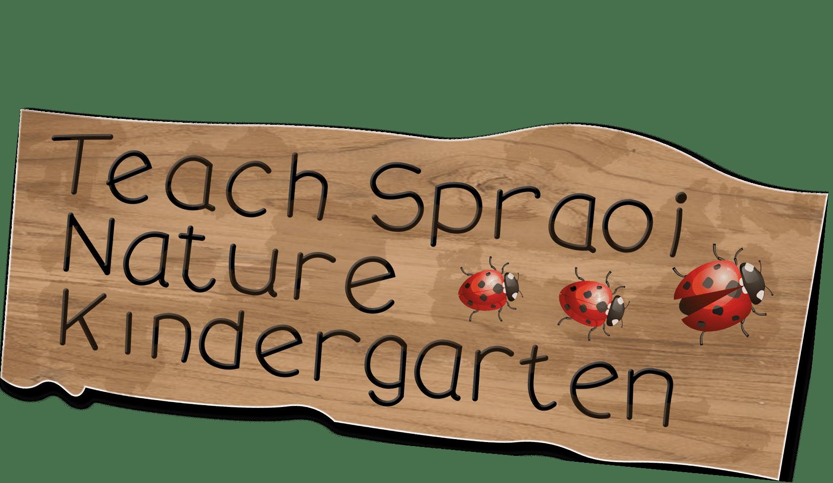 teachspraoi.ie